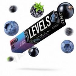 LEVELS 900 Berries Ice (Освежающий ягодный микс)